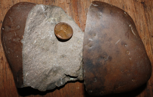 Broken quartzite cobble from the Susquehanna River with an indurated dark brown outer shell. A few Skolithos pock marks are visible in cross section to the right.